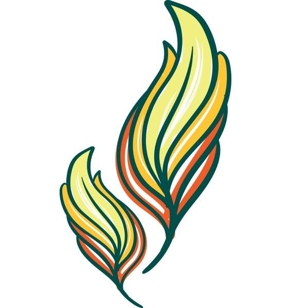 gul og gron farve fjer vektor