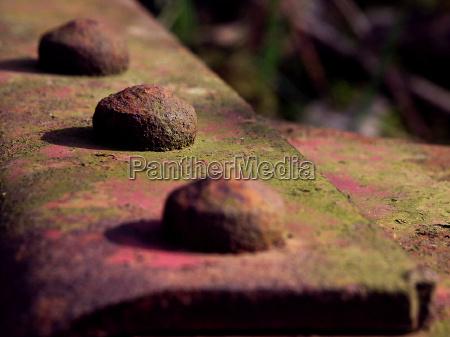 jern stal metal rustfrit rustne moss