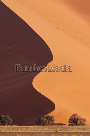sand curve ii