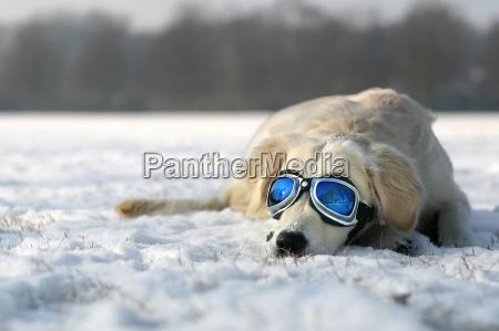 solbadning i winter