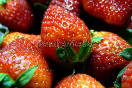 mad levnedsmiddel naeringsmiddel fodevare vitamin gron