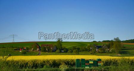 fruehlling cottages