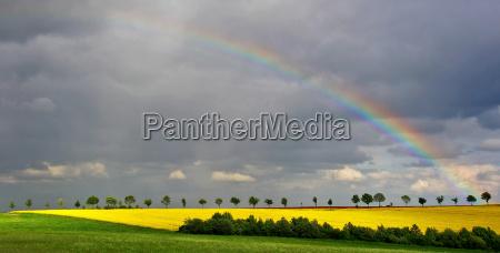 raps blomster felter storm thundery regnbue
