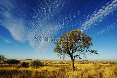 himlen over namibia