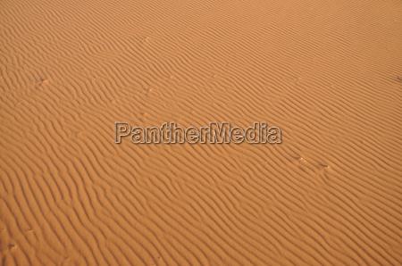 sand dune in the sahara morocco