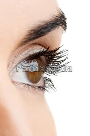 brune ojne