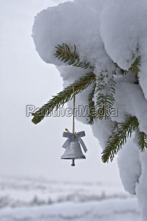 gren klokke dekoration juletraespynt sne natur
