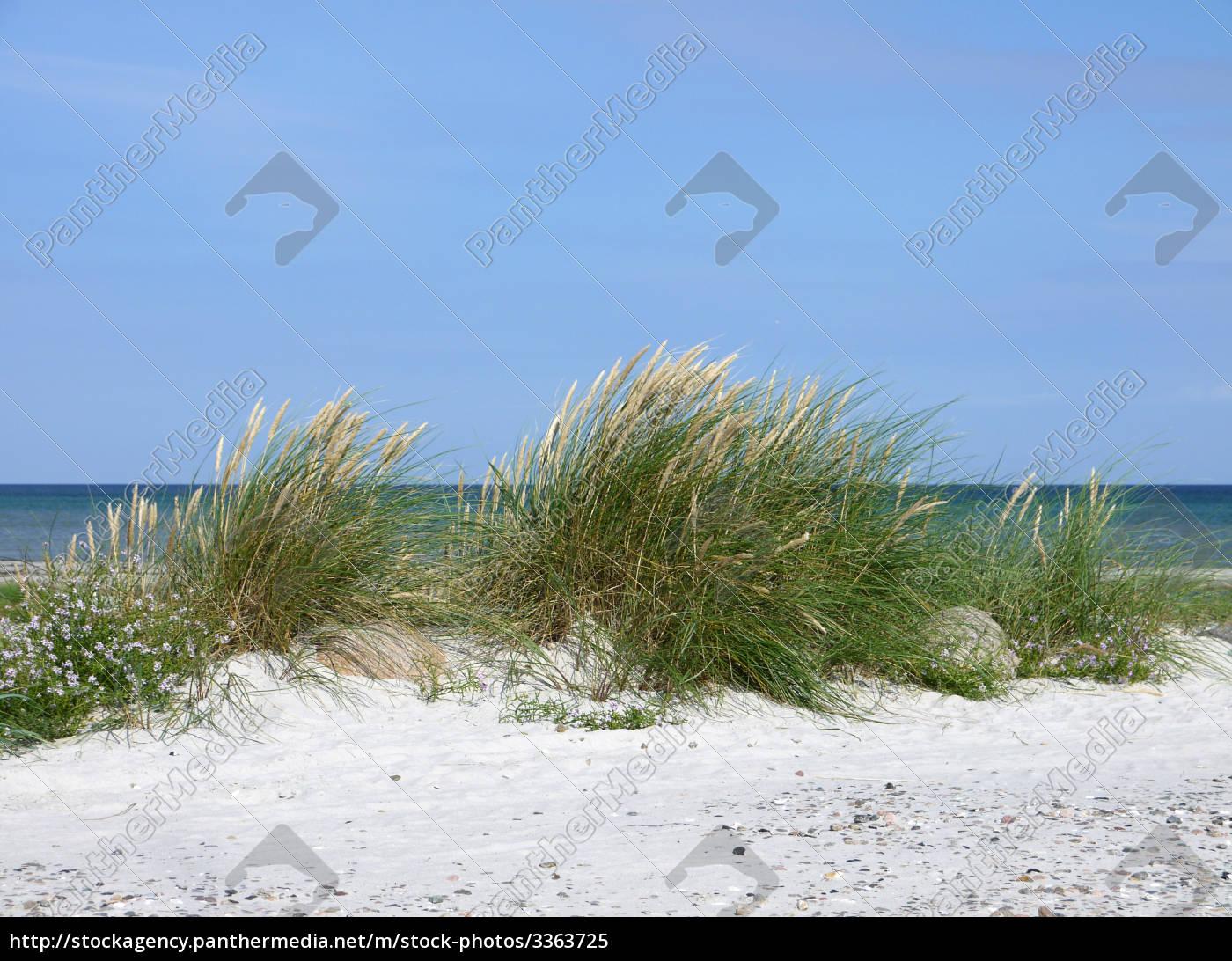 stranden - 3363725
