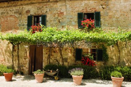 hus bygning tur rejse trae blomst