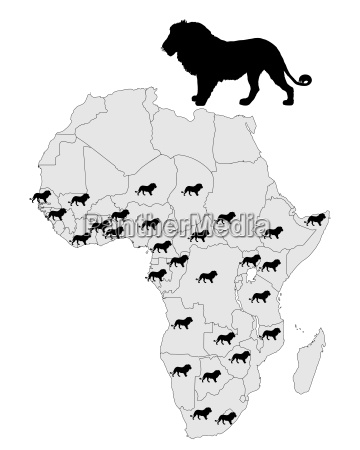 valgfri dyr pattedyr fauna afrika love