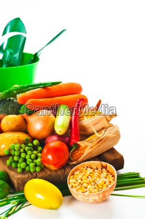 grontsager kal tomat agurk log salat