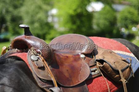 hest ridesport tojle rytter rytterstatuen sadel
