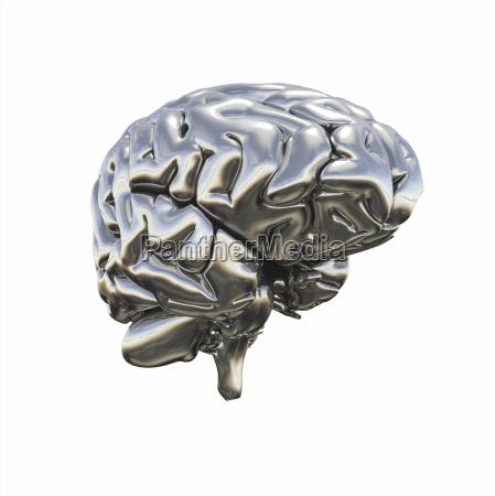 solv skinnende chrome hjernen isoleret