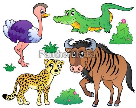 savannah dyr samling 2