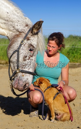 friendships in equestrian sports