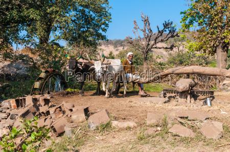 bevaesserungsanlage im laendlichen rajasthan indien