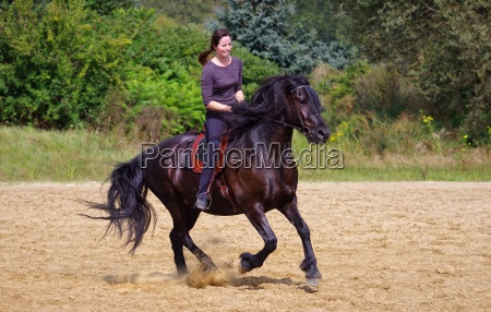 friendship sport sports ride horse gallop