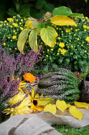 have blomsterdekorationer havearbejde heath haver arbejde