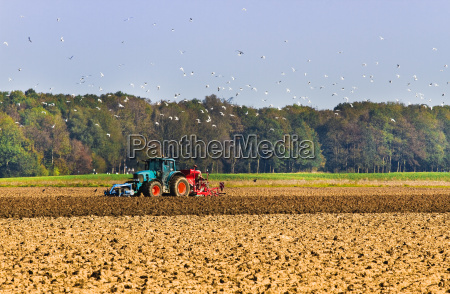landbrug plaeg op pa marken