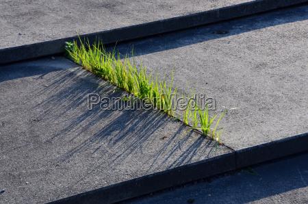 graes og beton