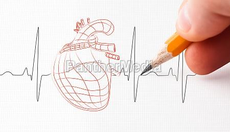skitse af en hjerte og puls