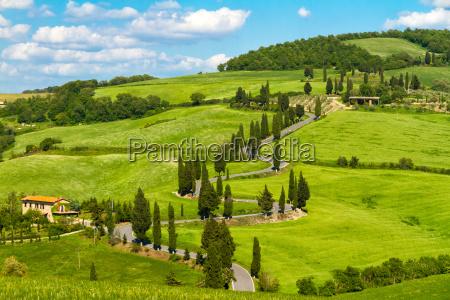 toscana vej med cypresser val dorcia