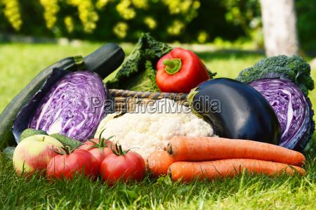 mad levnedsmiddel naeringsmiddel fodevare peber have