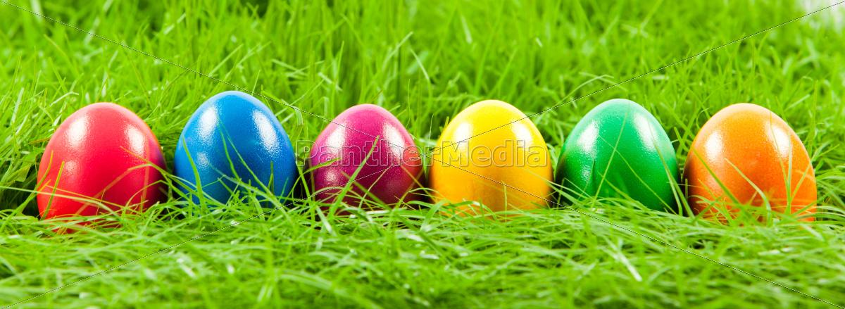 easter, eggs, in, fresh, green, grass - 10045386
