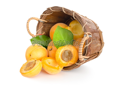 stilleben appelsin mad levnedsmiddel naeringsmiddel fodevare