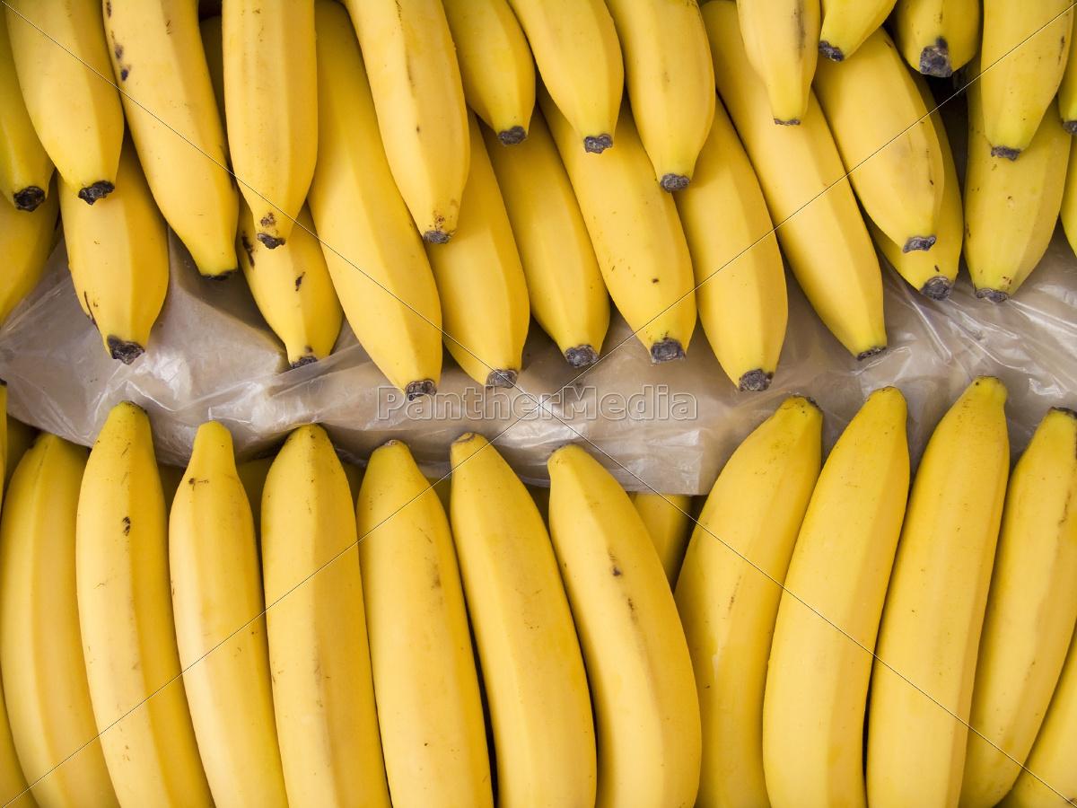 bananer, i, en, kasse - 10236919