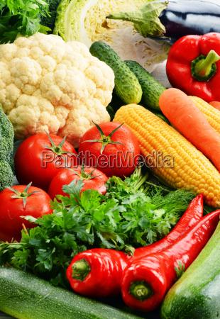 mad levnedsmiddel naeringsmiddel fodevare indkobe kobe