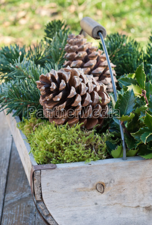 winter wood branches basket branch nuts