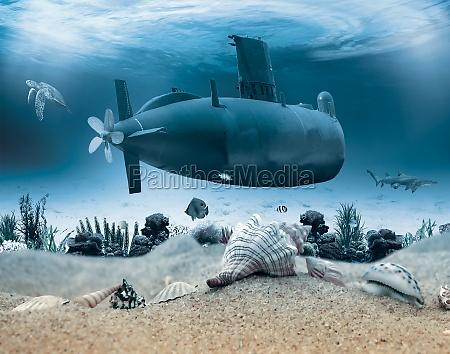 undervandslivet med ubad