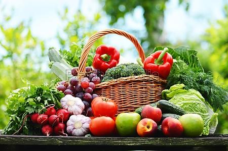 friske okologiske grontsager i kurvefletning i
