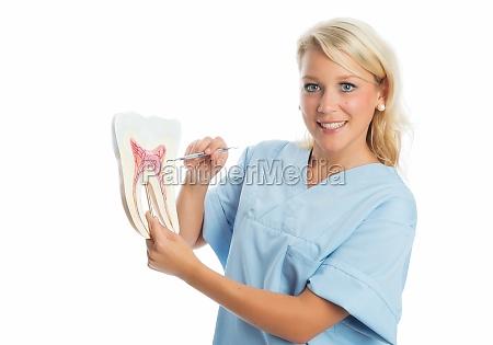 laege medic doktor kvinde tandlaege tandpleje