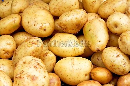 mad levnedsmiddel naeringsmiddel fodevare ra kartoffel