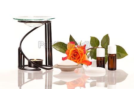 blomst rose plante aroma aeterisk anvendelse