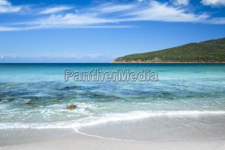 beach seaside the beach seashore australia
