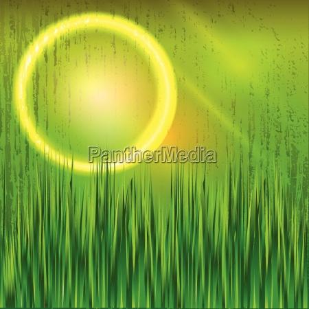 abstrakt sfaere eng graes graesplaene lys