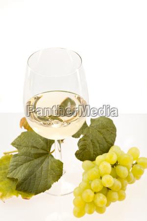 hvidvin i glas med druer mod