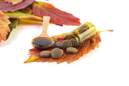 blad sundhed makrooptagelse close up naerbillede