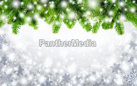 fir grene og snefnug
