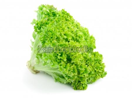 frisk salat isoleret pa hvid baggrund