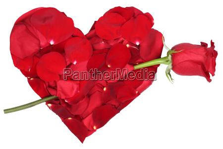 hjerte af blomster med rosen tema