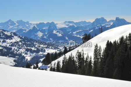 tilsneet vinterlandskab dyb upavirket sne