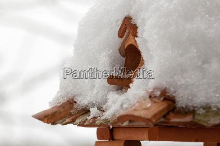 to sne daekket fugl hus