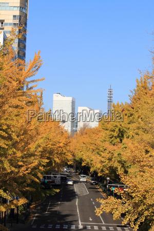blad by park lys solbeskinnet bybillede