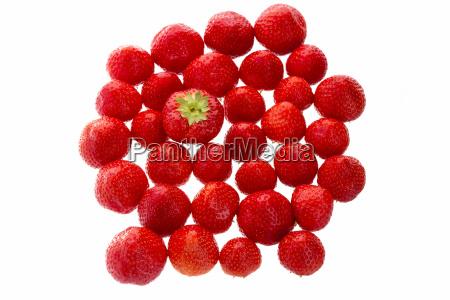 big strawberry staende ud fra maengden