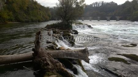 rhinen vandfald flod vand