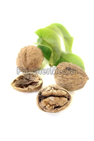 gron gront gronne brun blade frugt